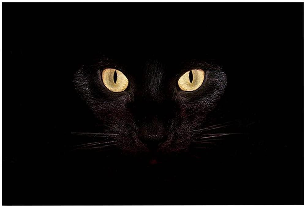ChezMax Black Cat Eyes Non-Slip Doormat Coral Fleece Indoor Outdoor Kitchen Floor Rug Front Door Mat Funny Flannel Carpet 16 X 23 Inches