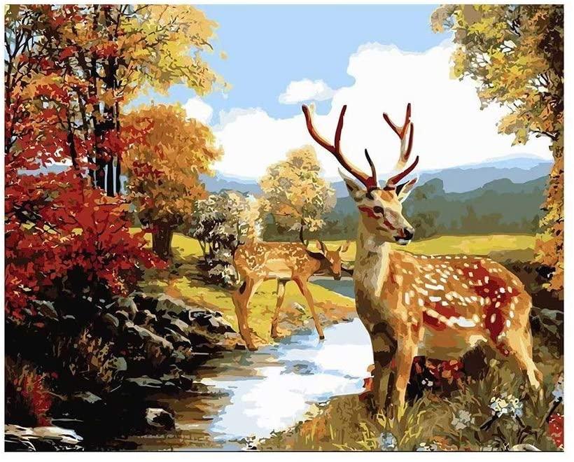DIY Oil Painting Paint by Numbers - Cute Deers Kits for Adults Kids Beginner - 16 x 20
