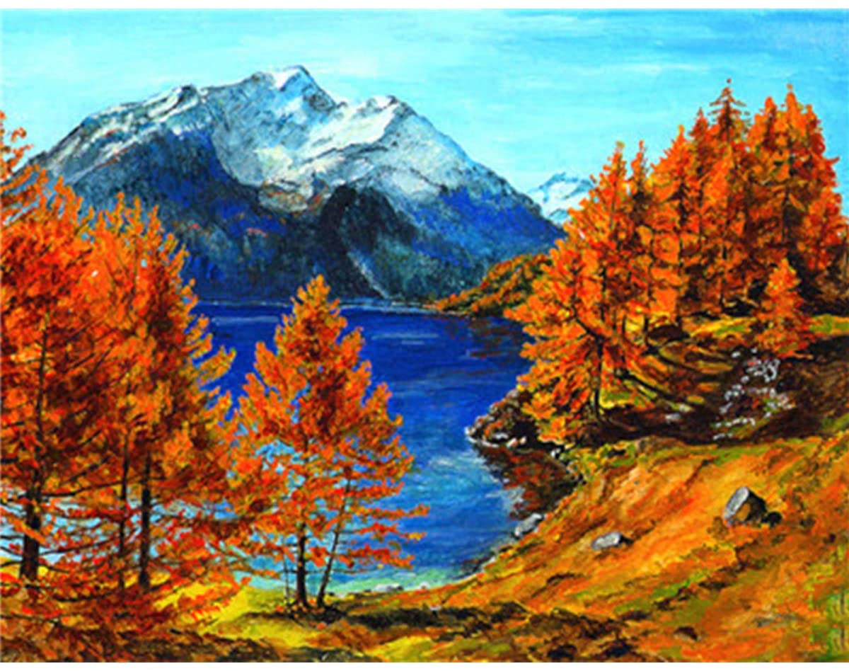 DOERDO Paint by Numbers for Adults DIY Oil Painting Paint by Numbers Kit for Adults Beginner 16x20inch with 3 Brushes and Bright Colorful Pigment