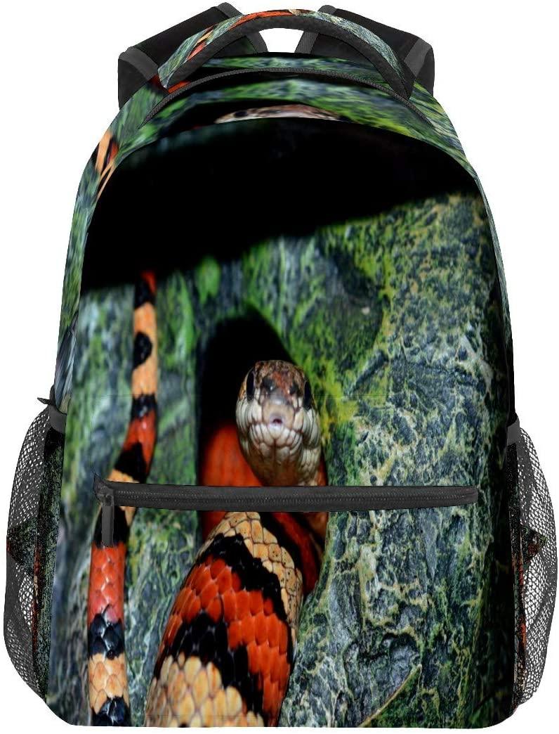 Snake Natter Constrictor Hunger Business Laptop Backpack Travel Hiking Camping Daypack College Bookbag Large Diaper Bag Doctor Bag School Backpack Water Resistant Anti-Theft for Women&Men