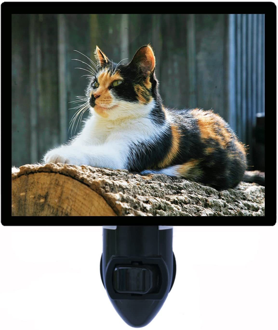 Cat Night Light, Calico Cat
