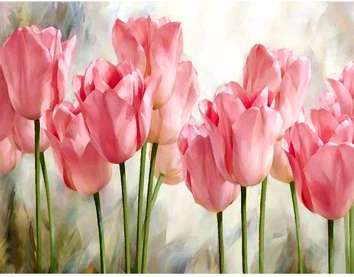 DOERDO DIY Paint by Numbers for Adults Kids Canvas DIY Oil Painting for Adults Drawing Paintwork with Paintbrushes, Acrylic Pigment,for Home Wall Decoration Pink Tulips 16x20inch