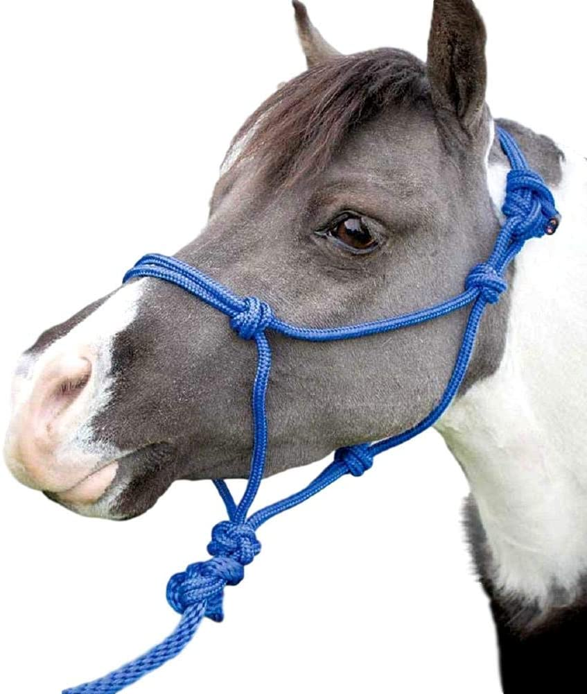 EQUI-SKY Mini Rope Halter with Lead – 12 Pack Assorted Colors