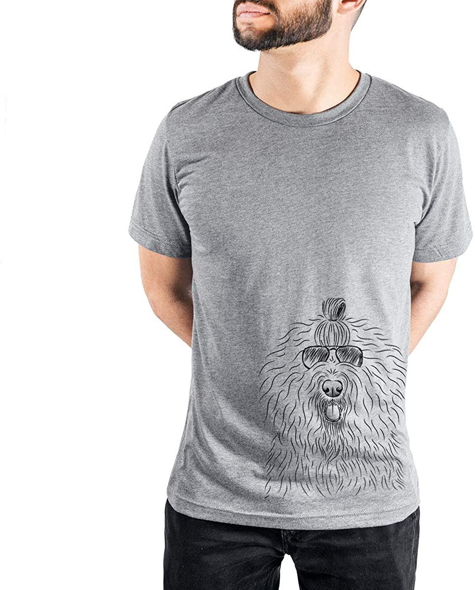 Aviator Brody The Old English Sheepdog Triblend T-Shirt