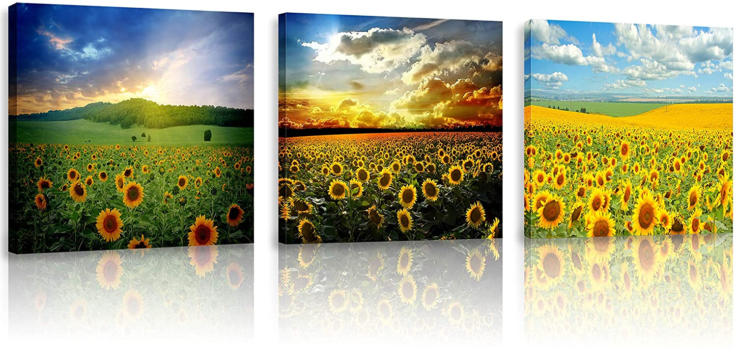 FUNHUA Sunflowers Canvas Wall Art 3 Piece Field of Blooming Sunflowers on a Background Art Prints Sunset Sunshine Framed Painting for Entryway Kitchen Bedroom Office Home Decoration, 12'' x 12''