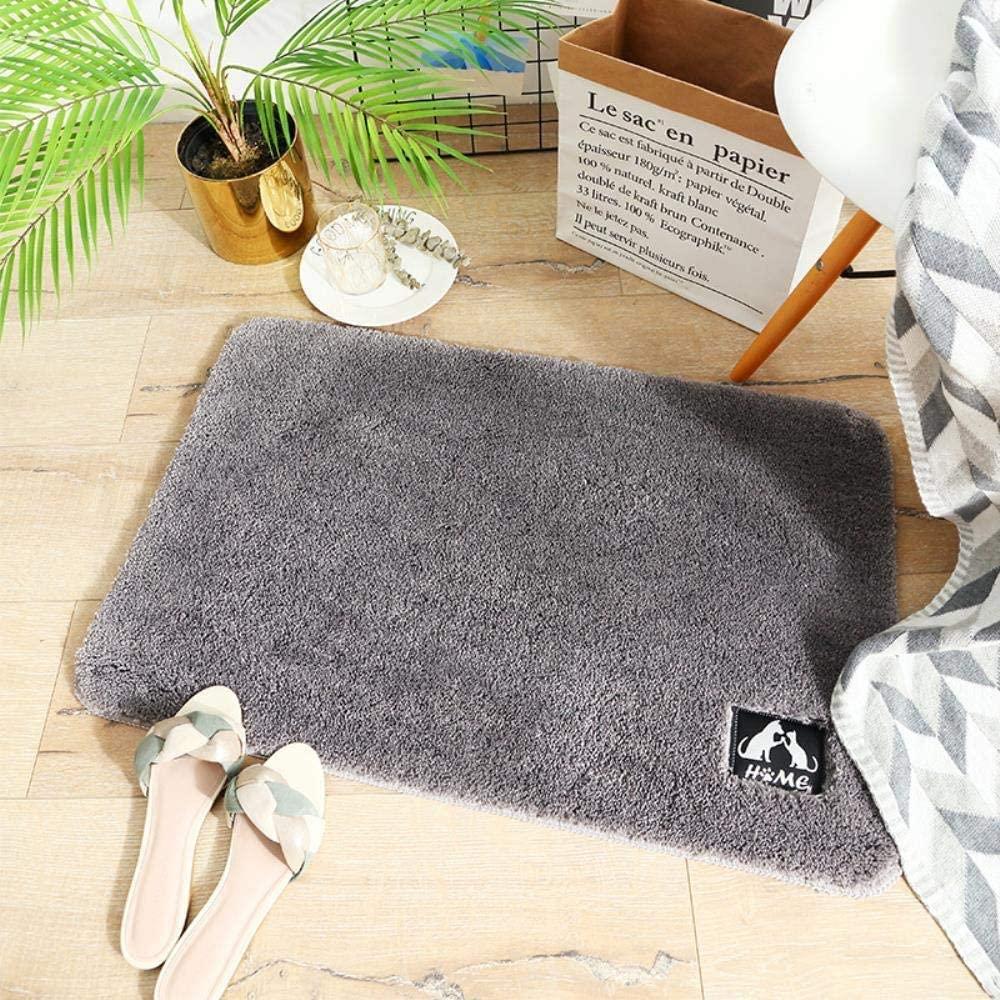Rugs Bathroom mats Cake Velvet Home Door Bedroom Carpet Floor mats Bathroom Thickening Bathroom mat Absorbent feet (Size :40x60cm) (4060cm, Cake Velvet - Gray)