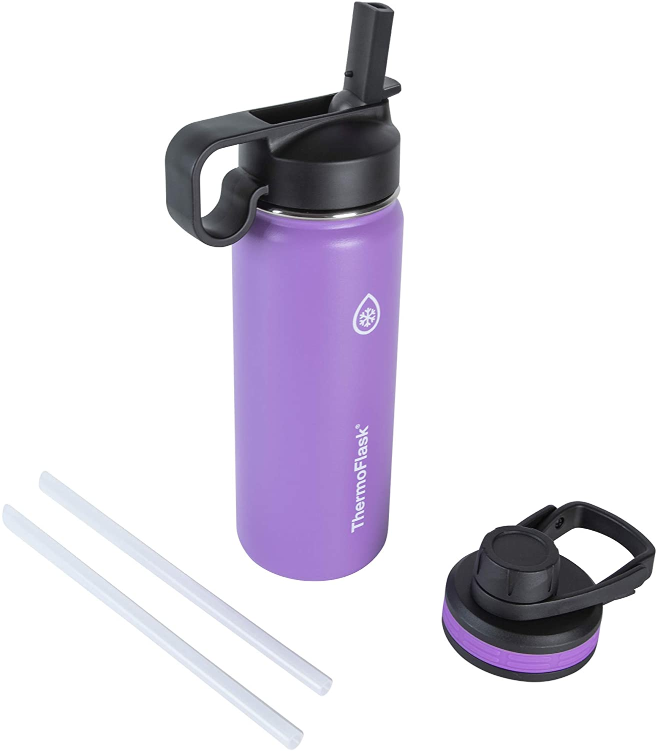 Thermoflask Double Stainless Steel Insulated Water Bottle, 18 oz, Plum