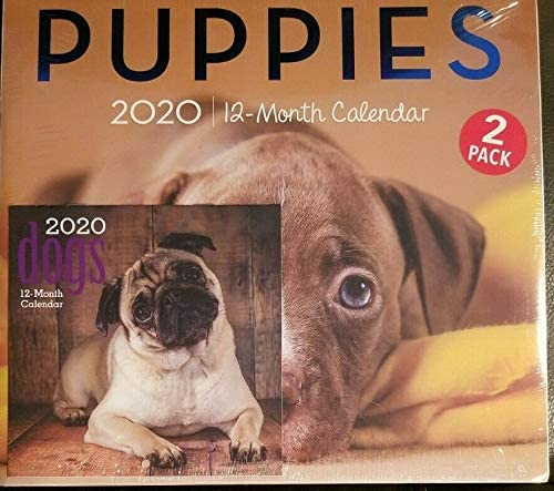 2 Pack of 12 Month 2020 Wall Calendars Puppies Dogs New Sealed