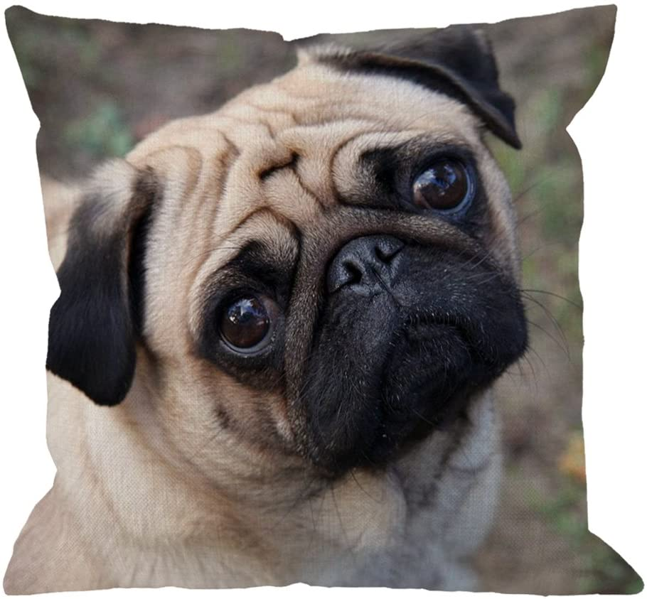 HGOD DESIGNS Pug Pillow Cases, Funny Pug Dog Look at You Cotton Linen Cushion Cover Square Standard Home Decorative Throw Pillow for Men/Women 18x18 inch Brown Black