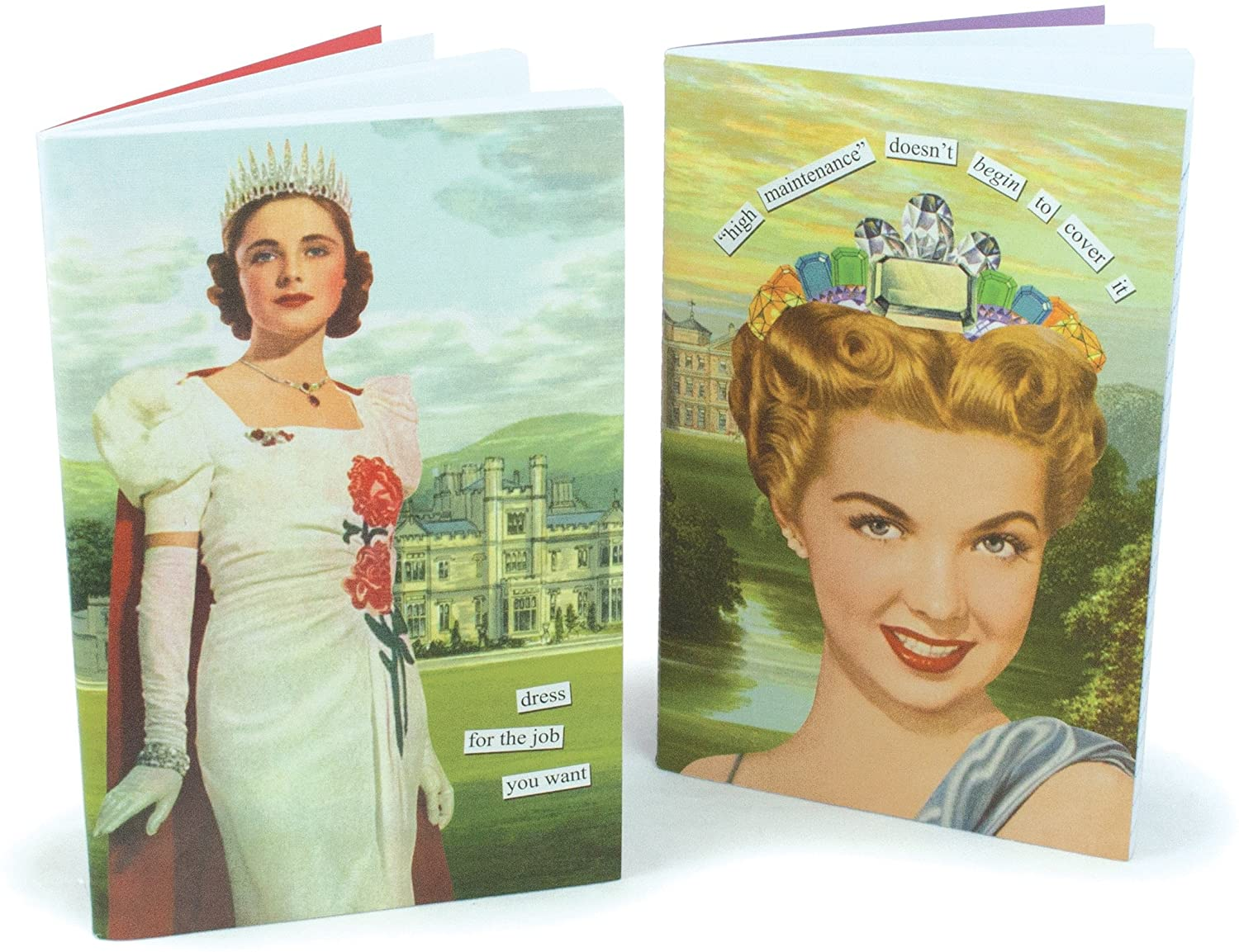 Anne Taintor Notebook Set - Dress For The Job You Want