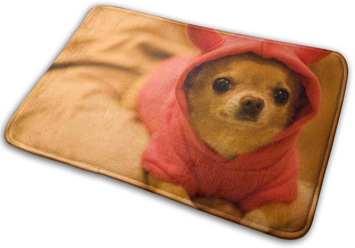 Super Absorbent Water Bath Rug Bath Mat Anti-Slip Durable Surprisingly (16 Inches X 24 Inches) Suitable for Bedroom Living Room Front Door - Cut Chihuahua Puppy Dog Kids