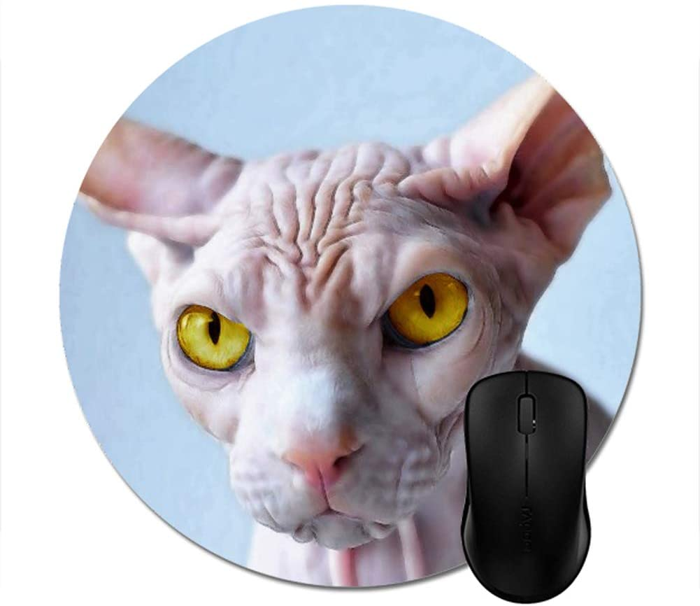 Sphynx Mouse Pad 8