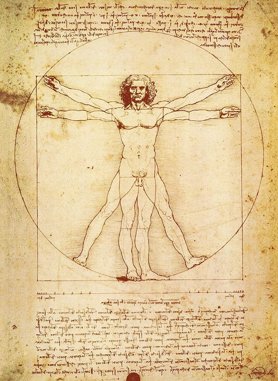 PalaceLearning Vitruvian Man by Leonardo Da Vinci Poster - Proportions of The Human Figure Drawing - Fine Art Print (Laminated, 18 x 24)
