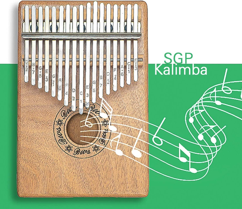 Kalimba Thumb Piano 17 Key Pocket Piano Portable Piano Mbira Sanza African Finger Piano with Kalimba Thumb Protector Hammer for Beginners Kids Adult Present Musical Toy Giftfor Kids