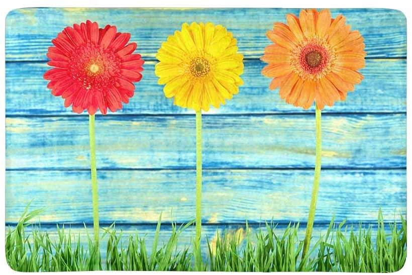 INTERESTPRINT Summer Colorful Daisy Flowers on Turquoise Blue Wood Doormat Non-Slip Indoor and Outdoor Door Mat Rug Home Decor, Entrance Rug Floor Mats Rubber Backing, 23.6