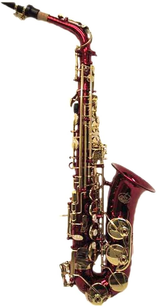 Sky E Flat Lacquer Alto Saxophone with F# Key, Case and 10 Reeds, Red
