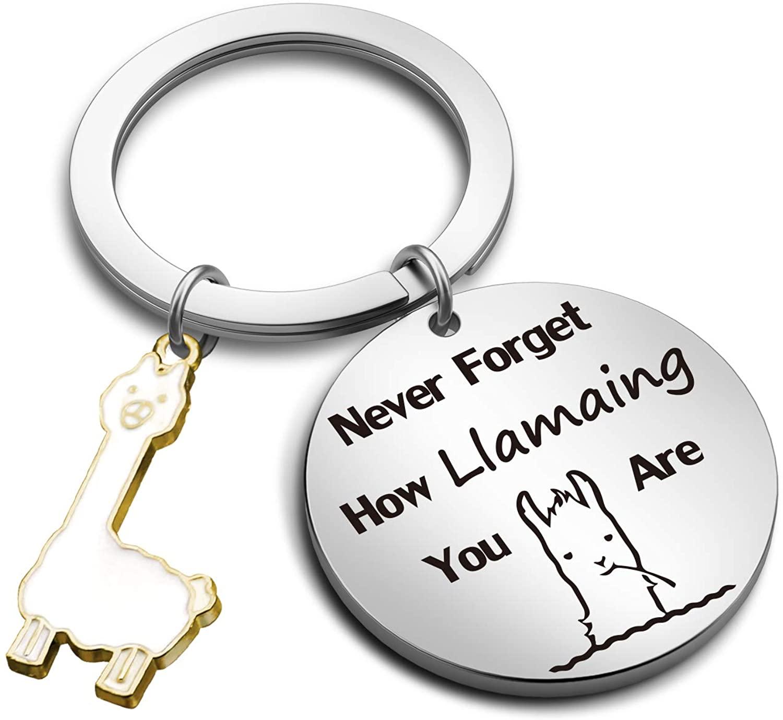 G-Ahora Llama Keychain Never Forget How Llamaing You are Inspirational Alpaca Jewelry Llama Lover Gift (How Llamaing KR)