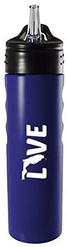 Florida-State Outline-Love-Stainless Steel Grip Water Bottle with Straw-Blue
