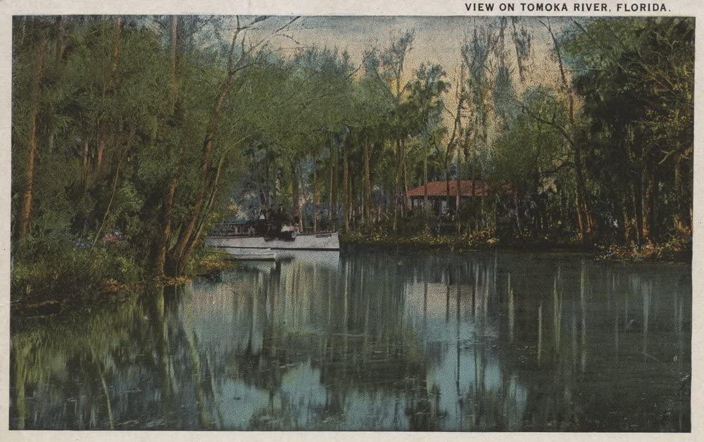 Water View of Tomoka River and Marsh, Florida (9x12 Art Print, Wall Decor Travel Poster)