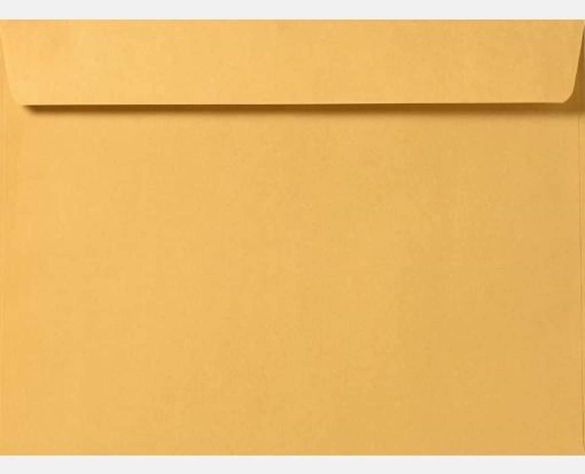 Limited Papers (TM) Booklet Envelopes, Brown Kraft, Gummed Seal, 28 Pound, Heavyweight, for Mailing and More. (1000, 10 x 15)