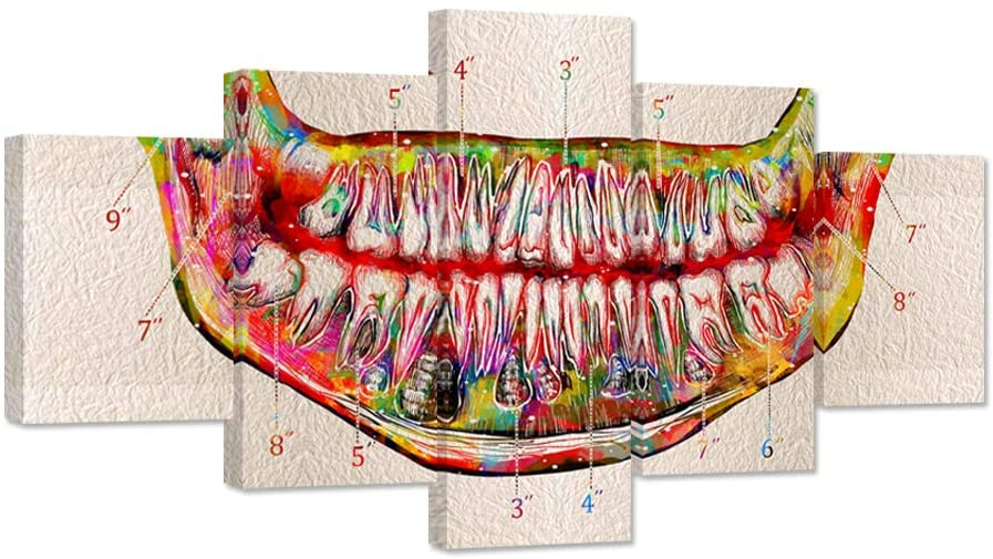 iHAPPYWALL Large 5 Pieces Tooth Canvas Wall Art Watercolor Teeth Anatomical Art Print on Canvas For Dental Clinic Office Medical Decor Dentistry Student Science Gift Stretched and Framed Ready To Hang