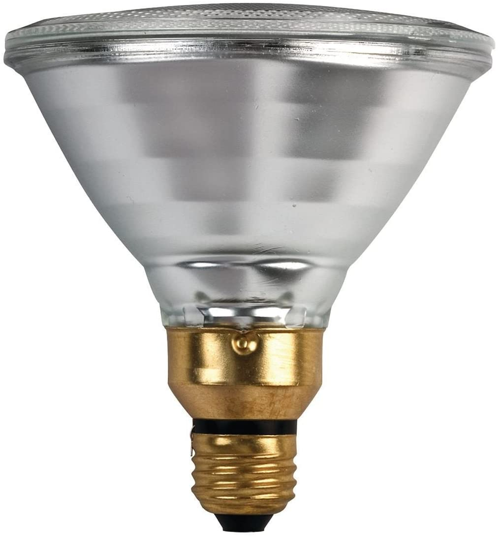 Philips 53W 120V PAR38 Halogen Flood Bulb