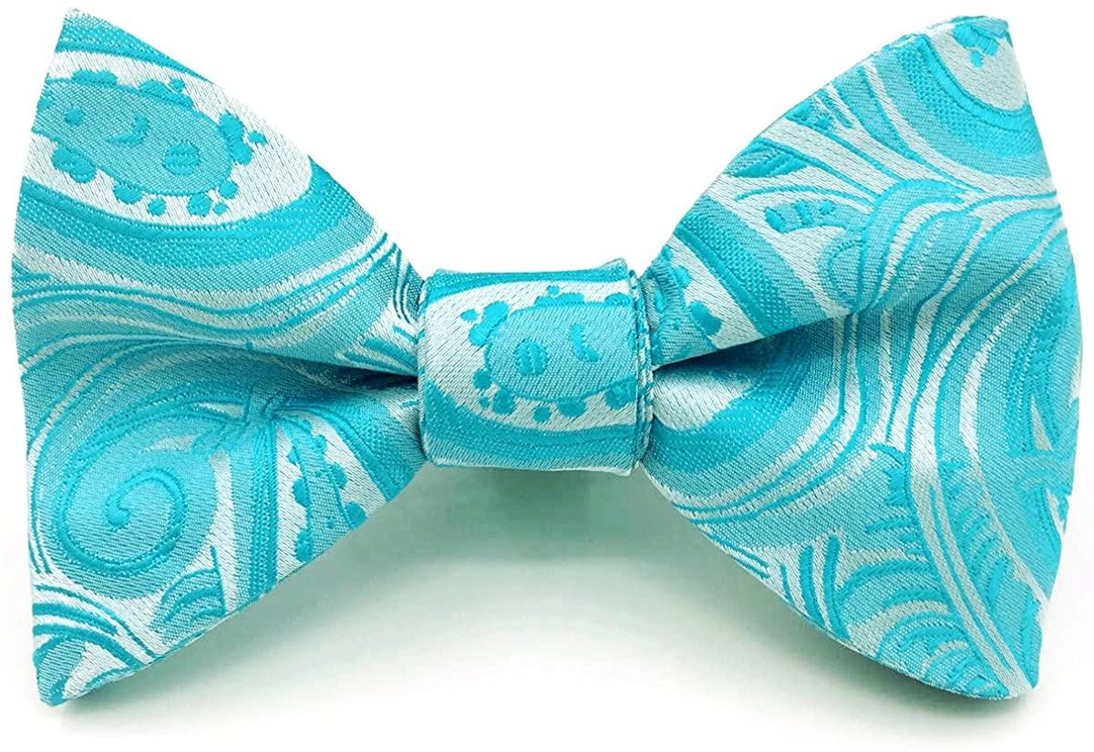 SHLAX&WING Silk Mens Tie Necktie for Wedding Party Paisley Aqua Blue