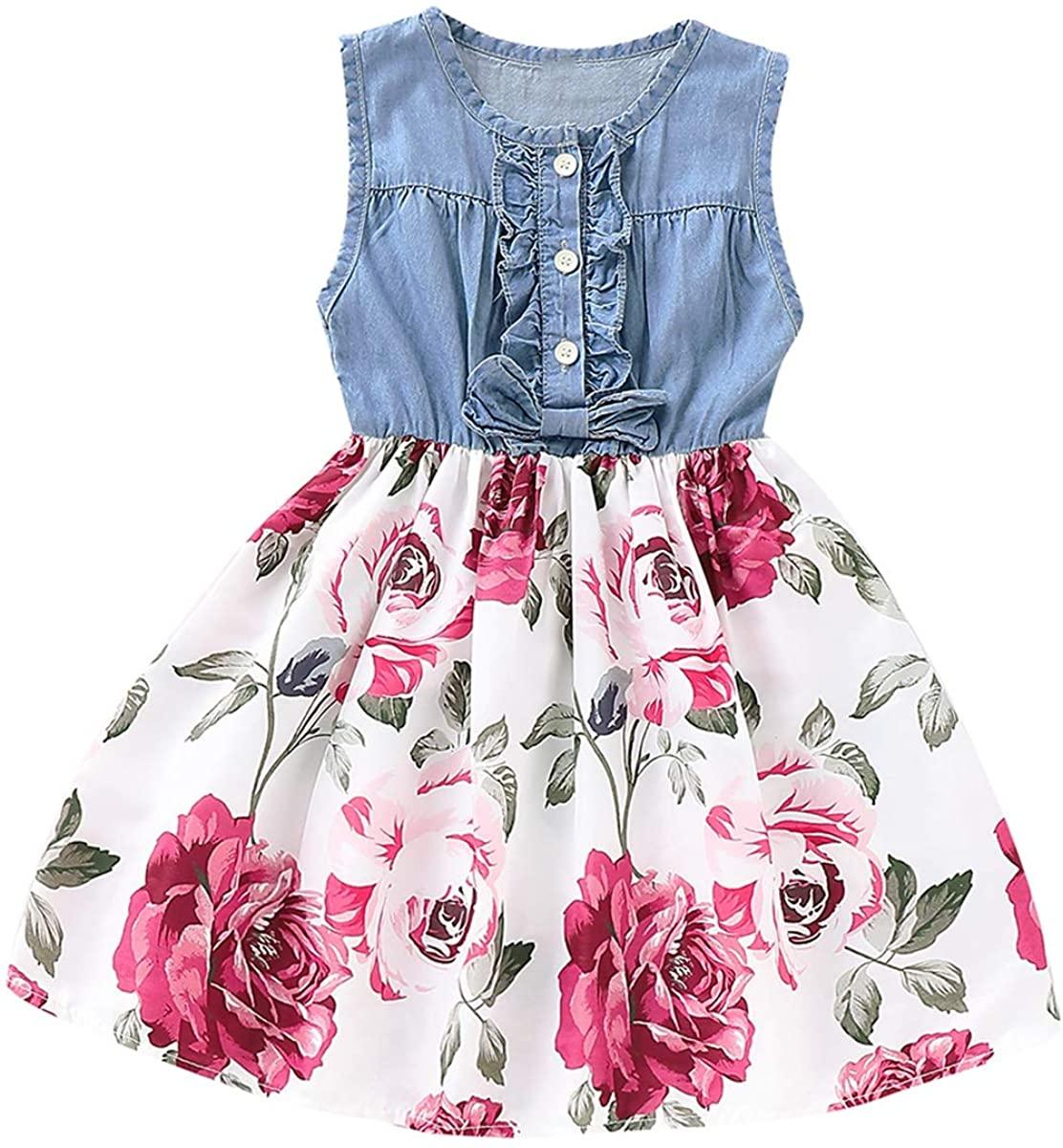 Haokaini Baby Girl Sleeveless Denim Dress, Button Up Floral Swing Skirt for Infant Toddler
