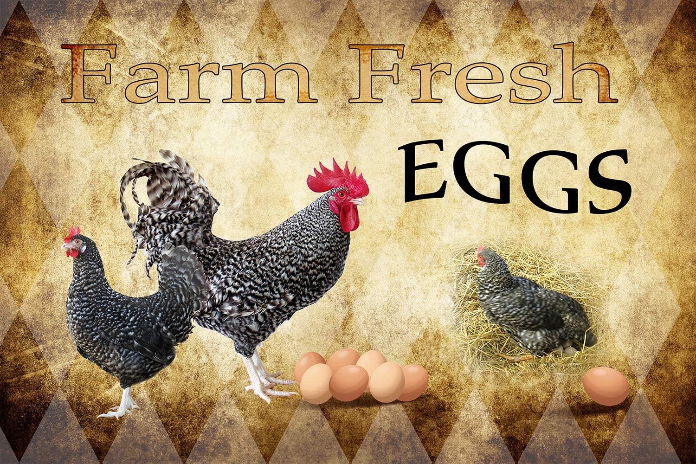 Muatoo Farm Fresh Eggs Chicken Hen Rooster Tin Signs Kitchen Retro Vintage Decor Metal Sign 12x8 Inch