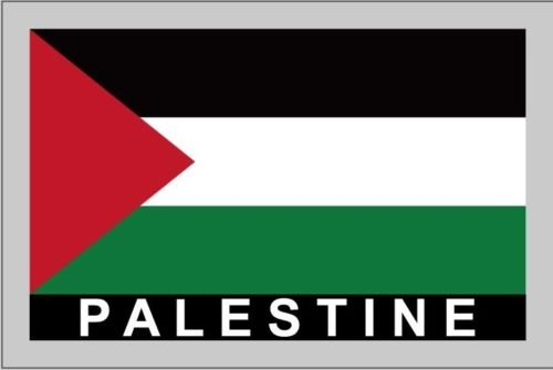 Temporary Body Face Country Flag Tattoo Stickers Water Transfer Party Tattoos (Palestine)