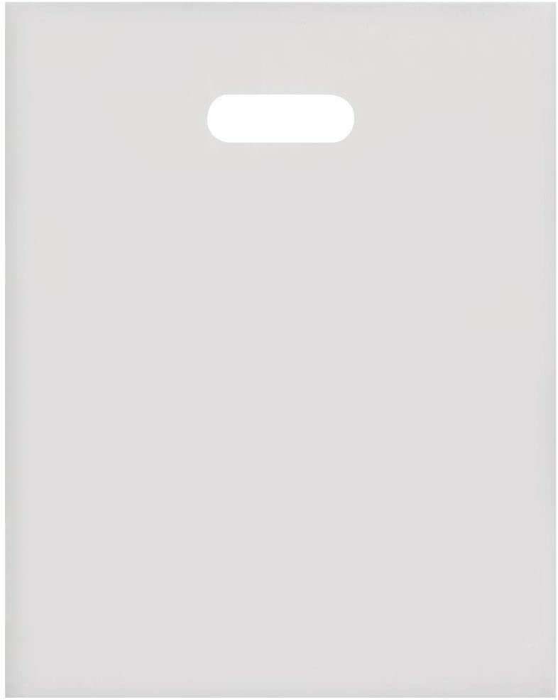 "SSWBasics Medium Clear Frosted Plastic Merchandise Bags - 12"" x 15"" - Case of 250"