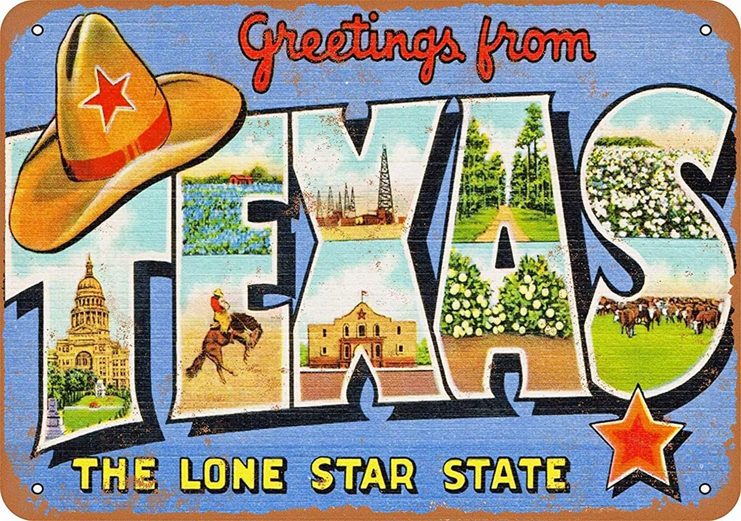 NOT Texas tin Sign Wall Iron Painting Retro Plaque Decoration Metal Poster Art Gift Warning Sign for Family Warehouse Garden Shops Hotels etc