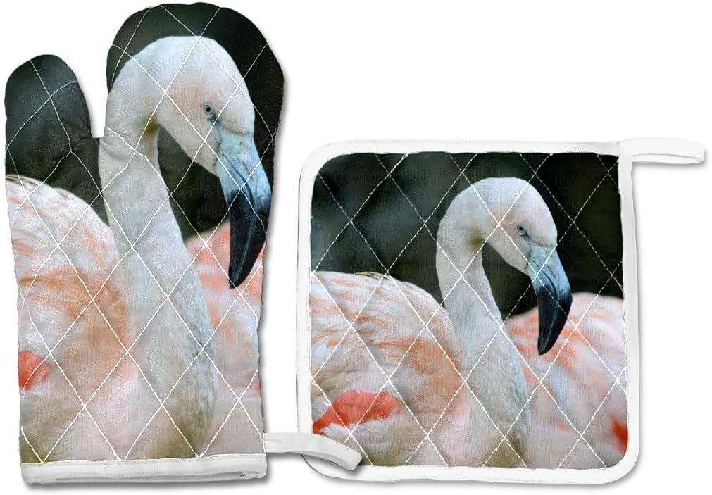 Oven Mitts and Pot Holders Set,Oven Glove Cooking Gloves Hot Pad,Heat Resistant Non-Slip BBQ Gloves Gift for Kitchen Cooking Baking Grilling Flamingo