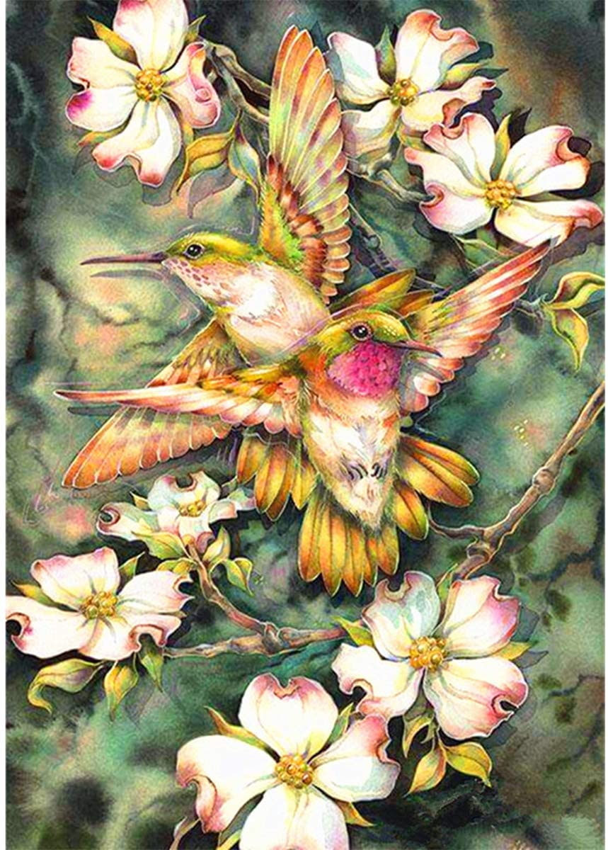 DIY 5D Diamond Painting Full Drill Square Diamond Art by Numbers Kit Diamonds Embroidery for Adult Wall Decor Birds
