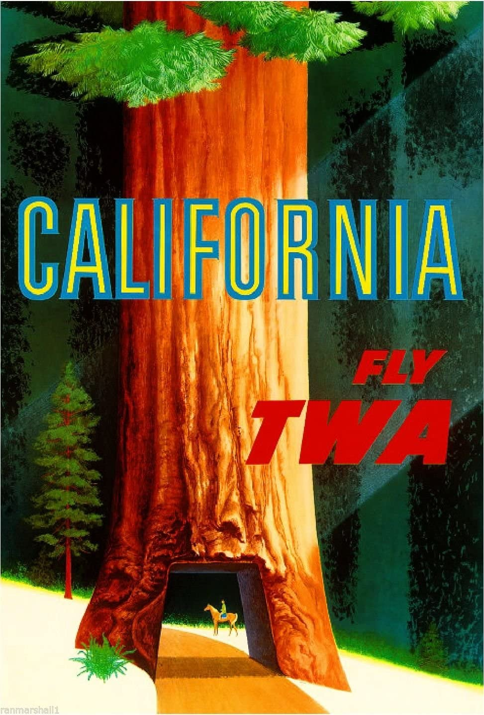 MAGNET Sequoia National California United States America Travel Advertisement Magnet 2