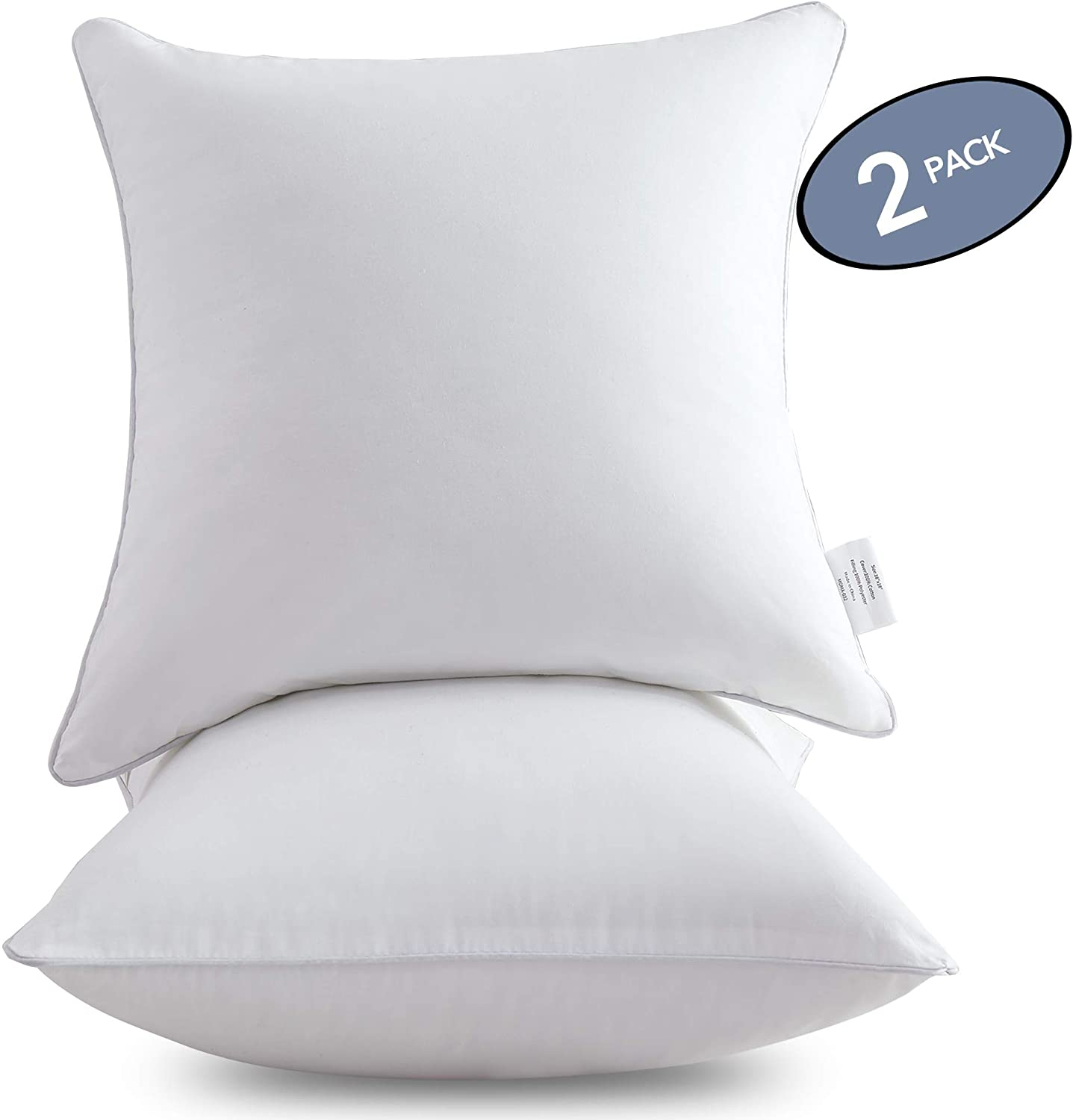 Leeden 20 x 20 Pillow Inserts (Set of 2) - Throw Pillow Inserts with 100% Cotton Cover - 18 Inch Square Interior Sofa Pillow Inserts - Decorative Pillow Insert Pair - White Couch Pillow