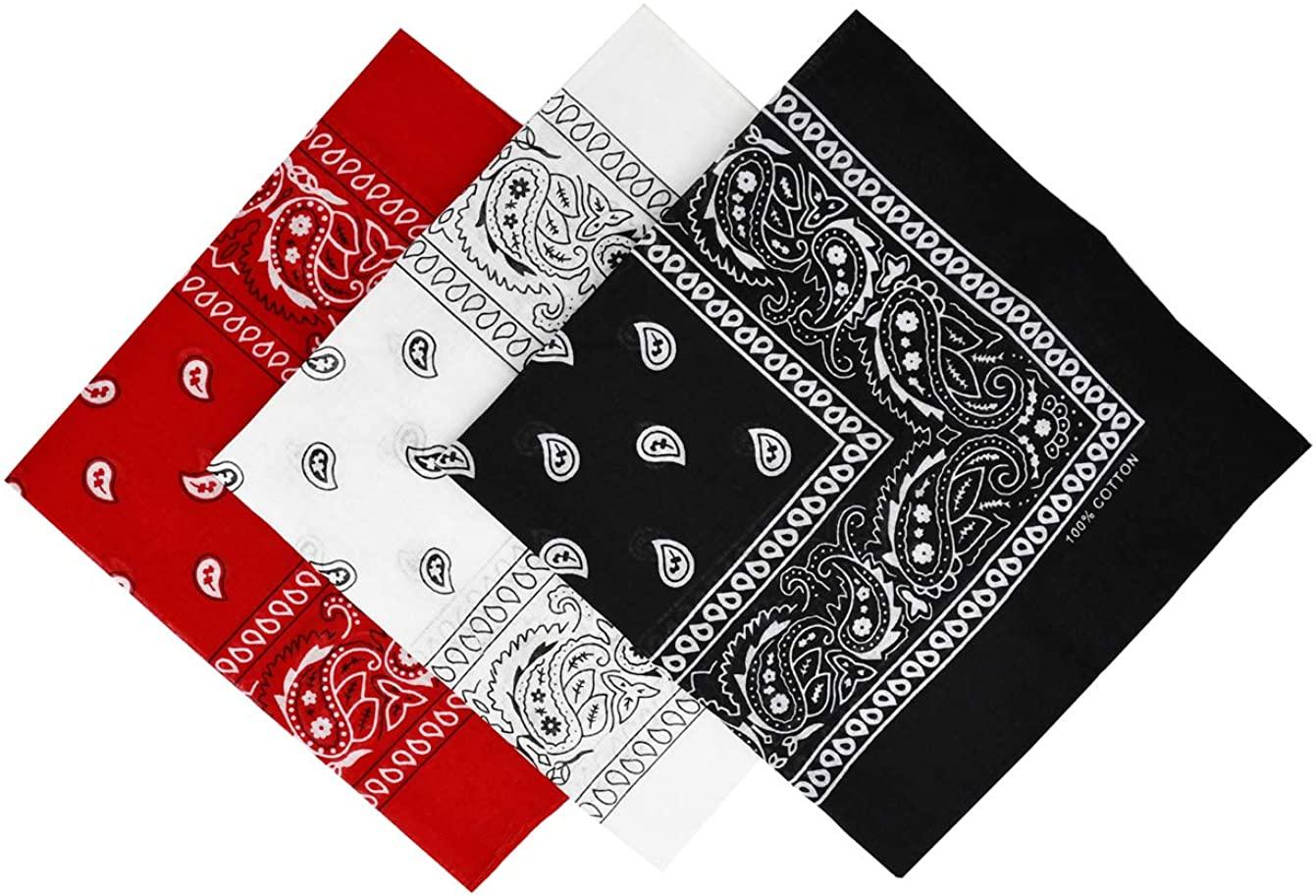 HCHYFZ 3PCS Paisley Bandanas for Men and Women Scarf Large 22x22inch
