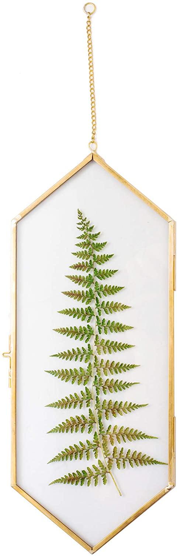 NCYP Vintage Brass Copper Floating Hanging Glass Long Hexagon Picture Photo Frame for Fern, Pressed Flower, Specimen