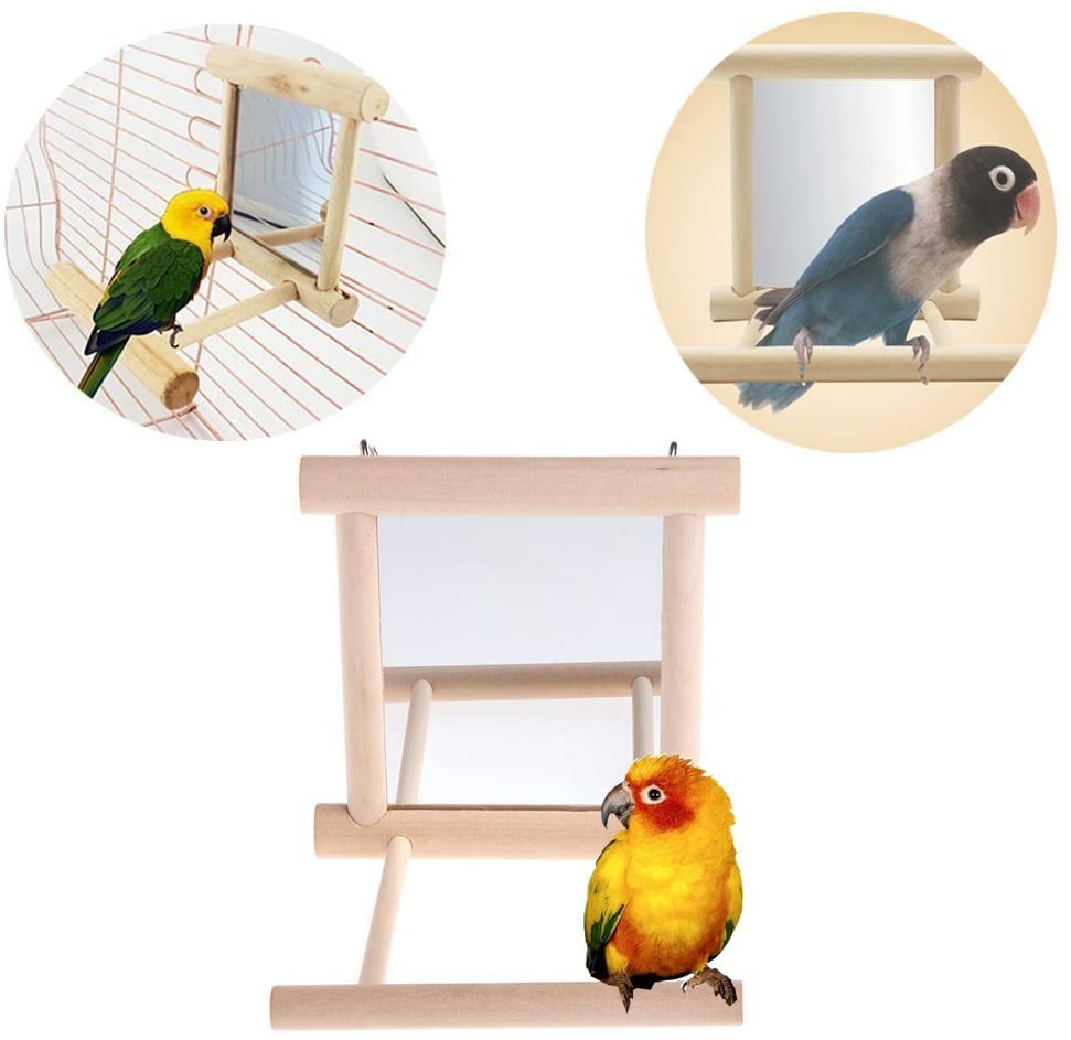 Hypeety Bird Parrot Mirror Toy with Perch for Parrot Parakeet Budgies Cockatiel Conure Finch Lovebird African Grey Macaw DHgate Cockatoo Birdcage Wood Stand Perch(Color Random)