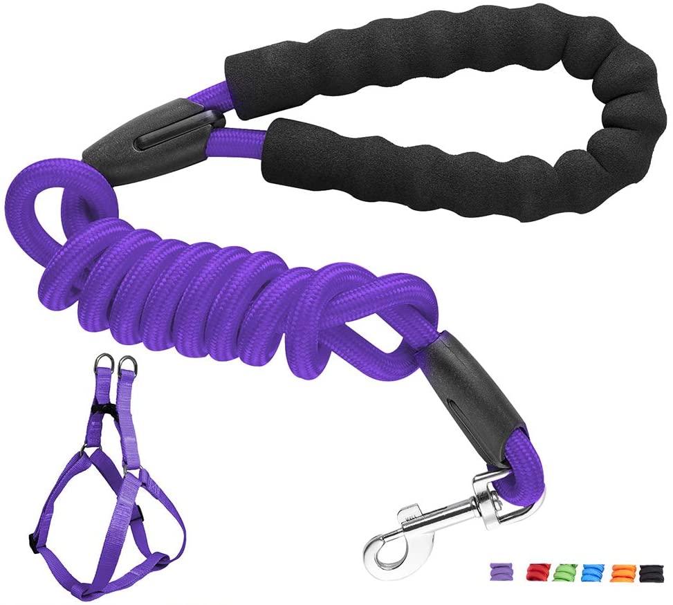 Small Dog Leash, Length 61 inch Dog Leash (Under 120 lbs)/W Harness(Under 44 lbs) Nylon, Soft Handle, Snap Lock -Purple