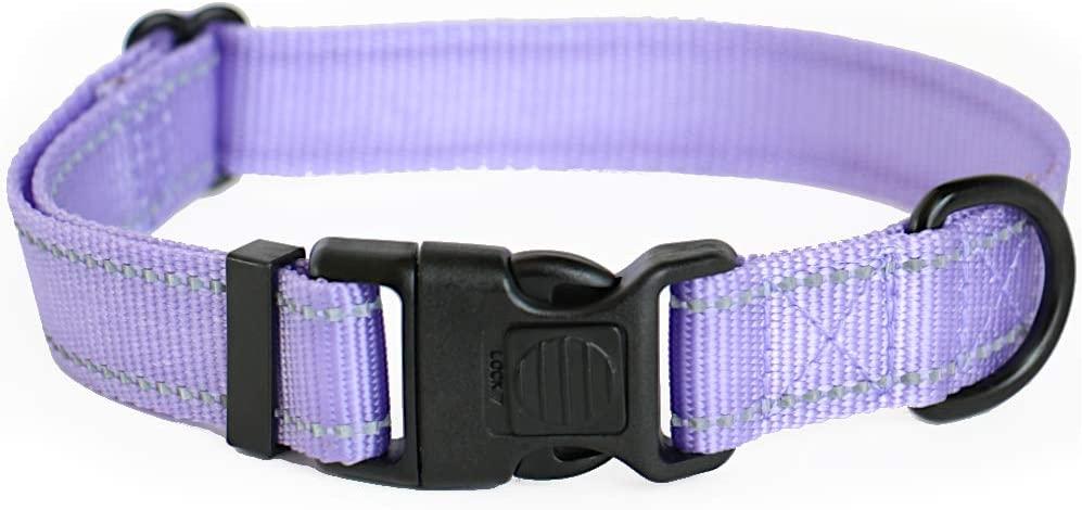 ICON Collars - Reflective Lockable Nylon Dog Collar Small Medium Large Sizes