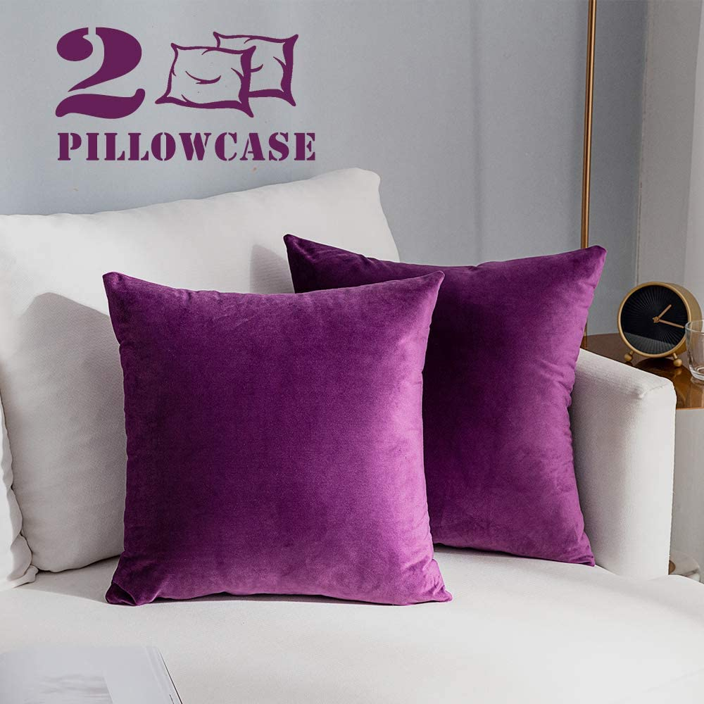 NANPIPER Set of 2 Velvet Soft Decorative Cushion Throw Pillow Covers 18x18 Inch/45x45 cm Cozy Solid Velvet Square Pillowcase Cushion Covers Violet for Couch and Bed