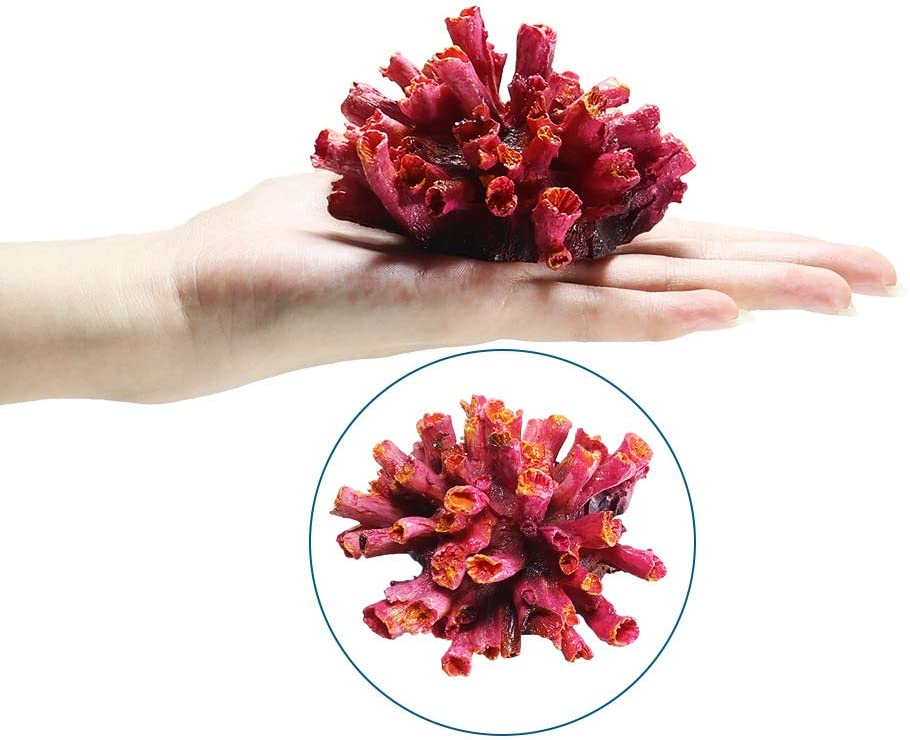 Danmu 1Pc of Polyresin Coral Ornaments, Aquarium Coral Decor for Fish Tank Aquarium Decoration 3 1/2