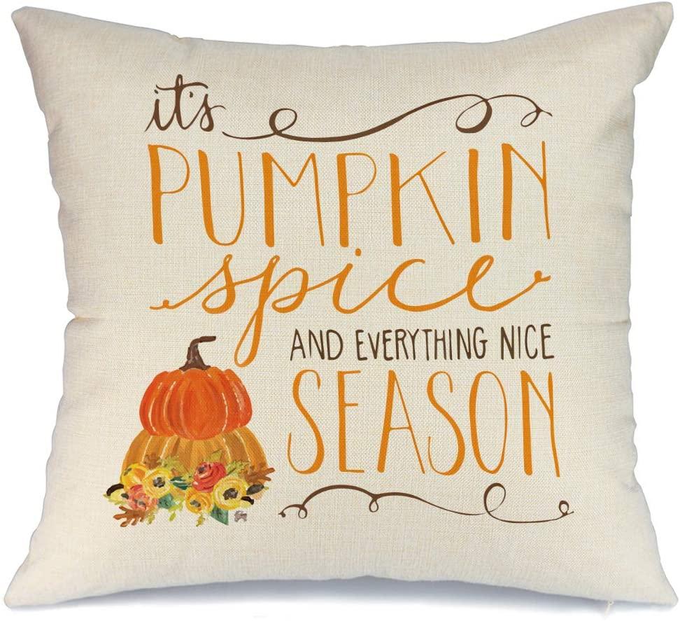 AENEY Fall Pillow Cover 18x18 inch Pumpkin Spice Pillow Fall Pillows Decorative Throw Pillows for Thanksgiving Fall Farmhouse Décor Autumn Decorations Outdoor Cushion Cases for Sofa Couch 2030bz18