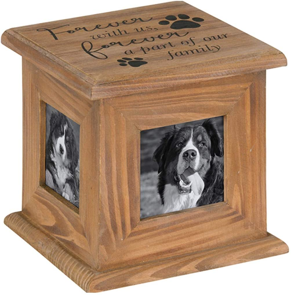 Carson 11420 Forever Wit Us Forever a Part of Our Family, Photo Memory Box, 3 x 3 Photo