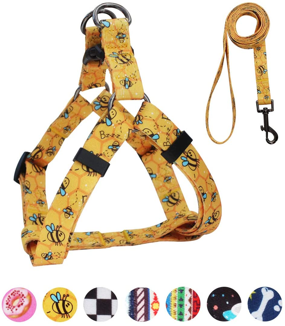 QQPETS Dog Harness Leash Set, Adjustable Heavy Duty No Pull Halter Harnesses for Large, Medium, Small Breed Dogs, Back Clip, Anti-Twist, Perfect for Walking