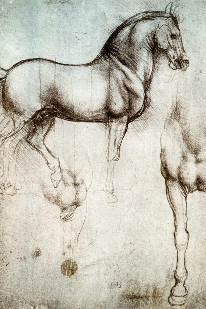 Leonardo da Vinci Study of Horses 1490 Drawing Sketch Diagram Cool Wall Decor Art Print Poster 24x36