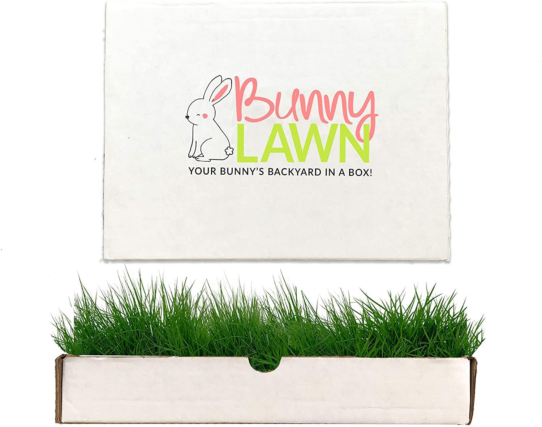Bunny Lawn Fresh Grass Mat for Your Rabbit, 12 x 9