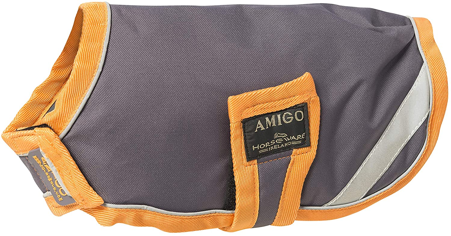 AMIGO, Dog Blanket 100g, Orange, Small