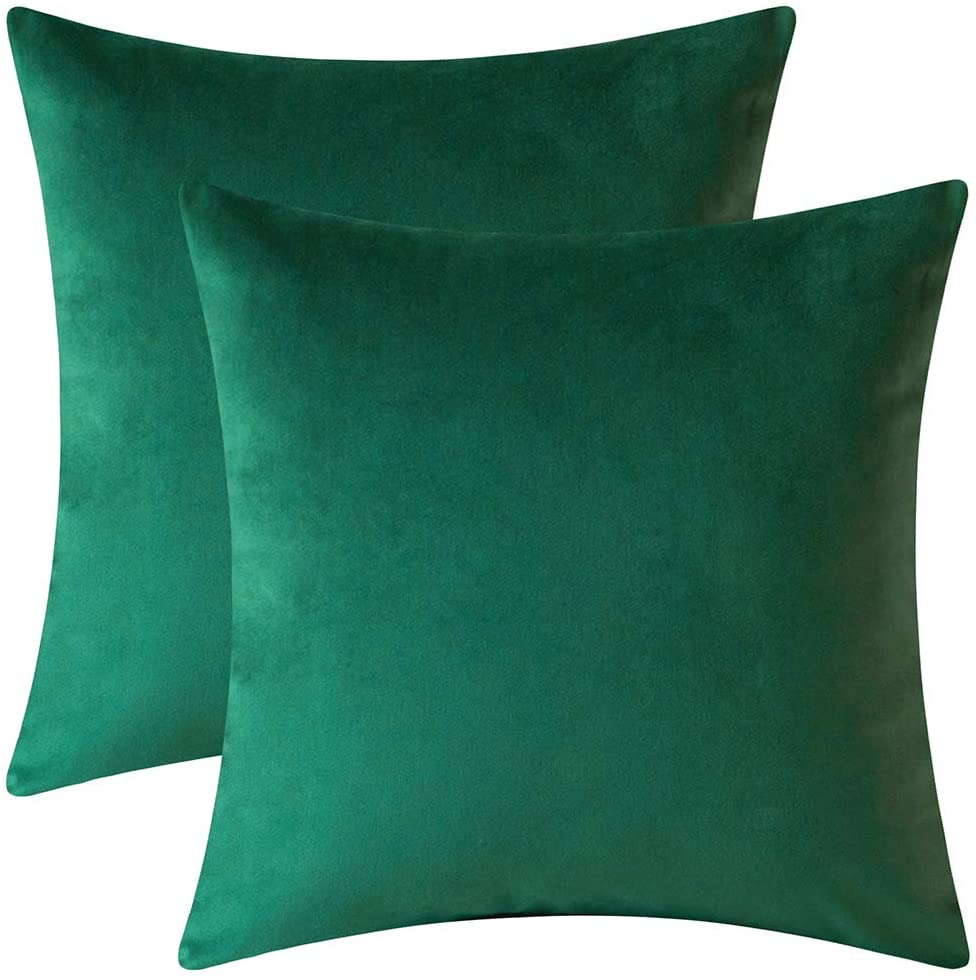 Rythome Set of 2 Comfortable Throw Pillow Cover for Bedding, Decorative Accent Cushion Sham Case for Couch Sofa, Soft Solid Velvet with Zipper Hidden - 16x16, Dark Green